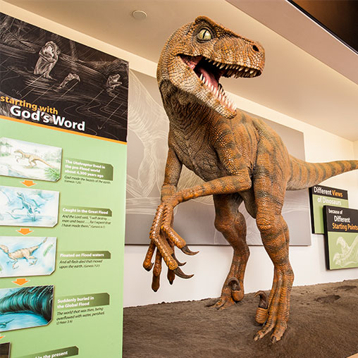 What's Happening at the Creation Museum